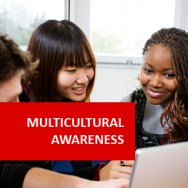 Multi Cultural Awareness