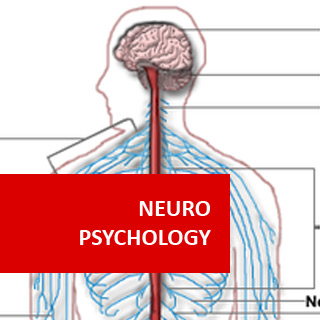 Neuropsychology 100 Hours Certificate Course
