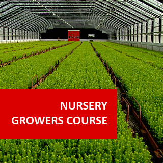 Nursery Growers Course 100 Hours Certificate Course