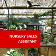 Nursery Sales Assistant