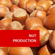 Nut Production 100 Hours Certificate Course