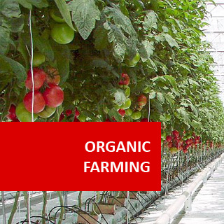 Organic Farming 100 Hours Certificate Course
