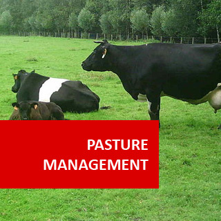 Pasture Management 100 Hours Certificate Course