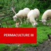 Permaculture III 100 Hours Certificate Course