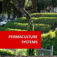 Permaculture Systems