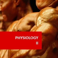 Human Physiology II 100 Hours Certificate Course (Pre-Medical Program)