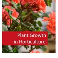 Plant Growth in Horticulture 100 Hours Certificate Course