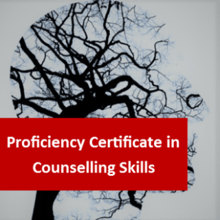 Counselling Skills Level 3 Proficiency Certificate - Parts 1 and 2