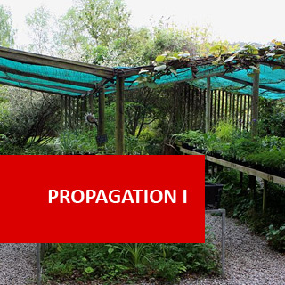 Propagation I 100 Hours Certificate Course