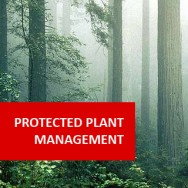 Protected Plant Production