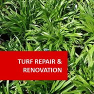 Turf Repair And Renovation 100 hours Certificate Course