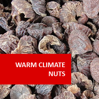 Warm Climate Nuts 100 Hours Certificate Course