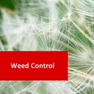 Weed Control 100 Hours Certificate Course