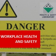 Workplace Health & Safety 100 Hours Certificate Course
