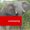 Zookeeping 100 Hours Certificate Course