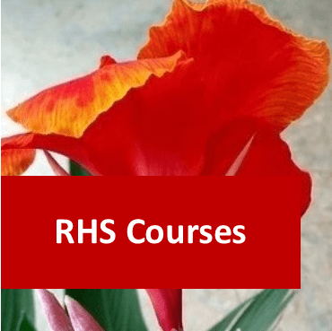 Link to RHS courses category