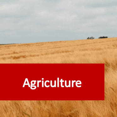 Link to agriculture courses category