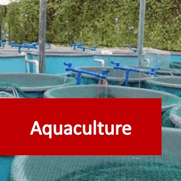 Link to Aquaculture courses category