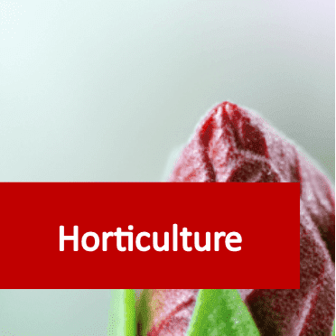 Link to Horticulture courses category
