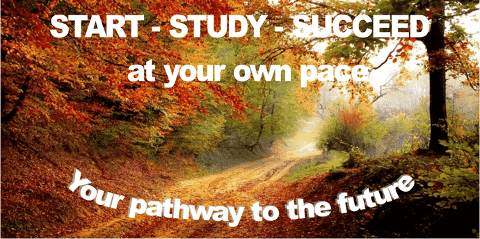Stasrt study succeed
