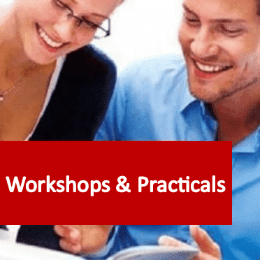 Link to Workshops and Practicals courses category