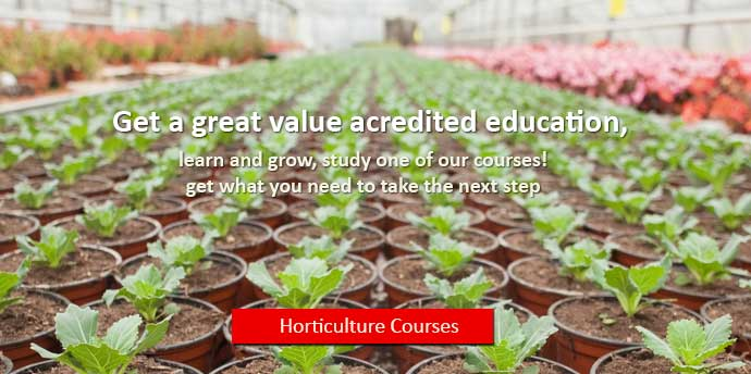 Horticulture Courses