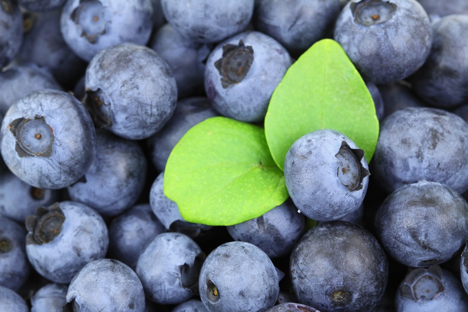 blueberries with a green leaf on top