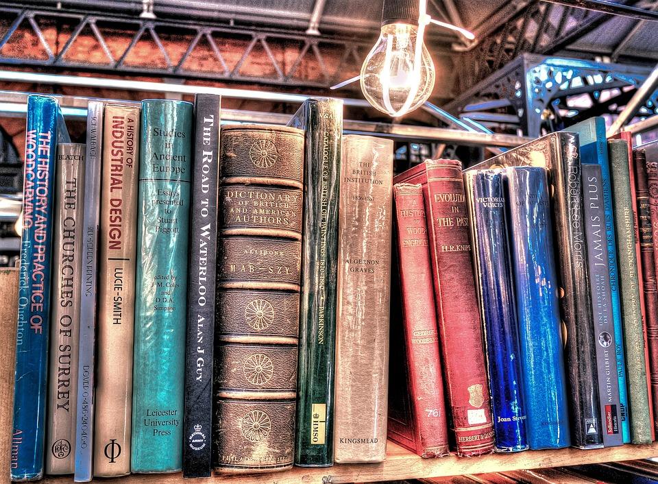 books lining a shelf