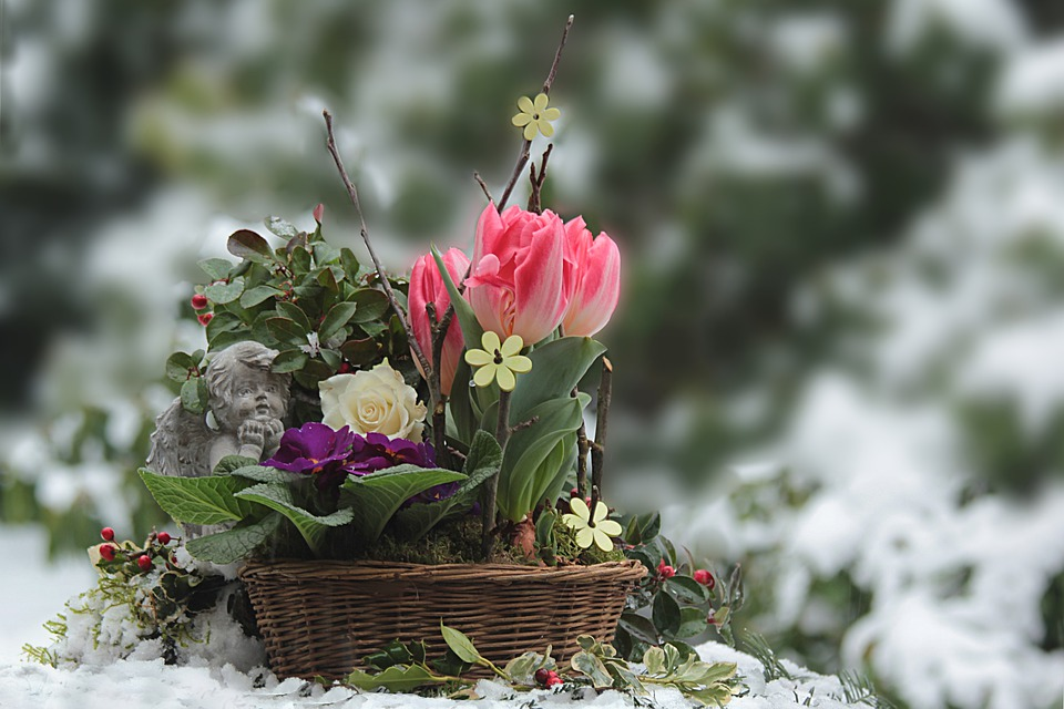 basket of colourfull flowers in snow