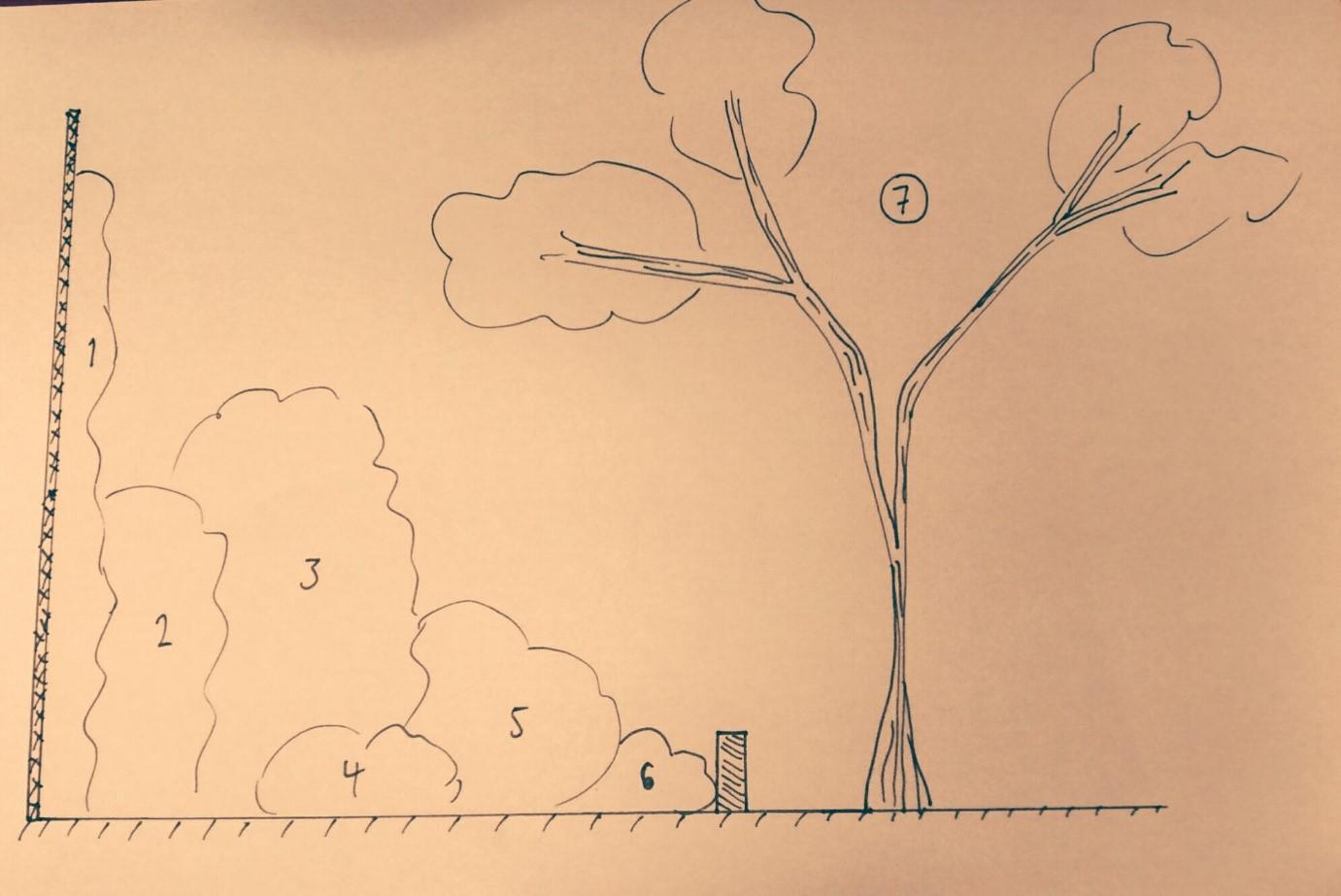 garden plan for a vertical garden
