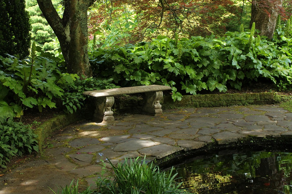 quiet, peaceful garden with a stone bench