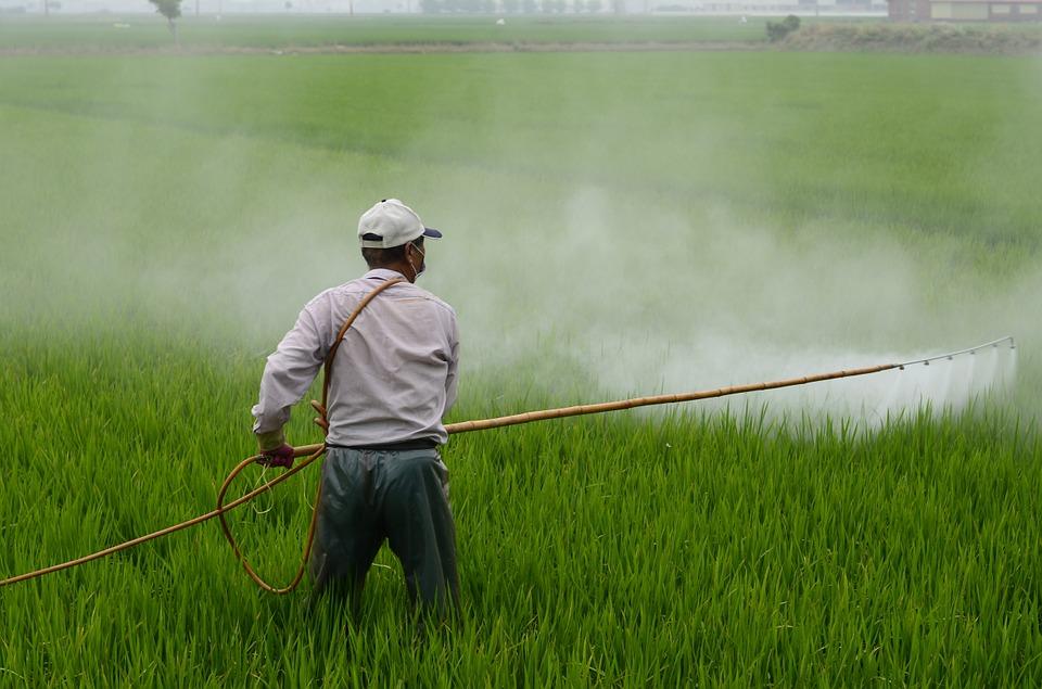 man spraying herbicide over crops