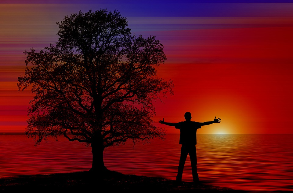 person with arms outstretched against a sunset next to a tree