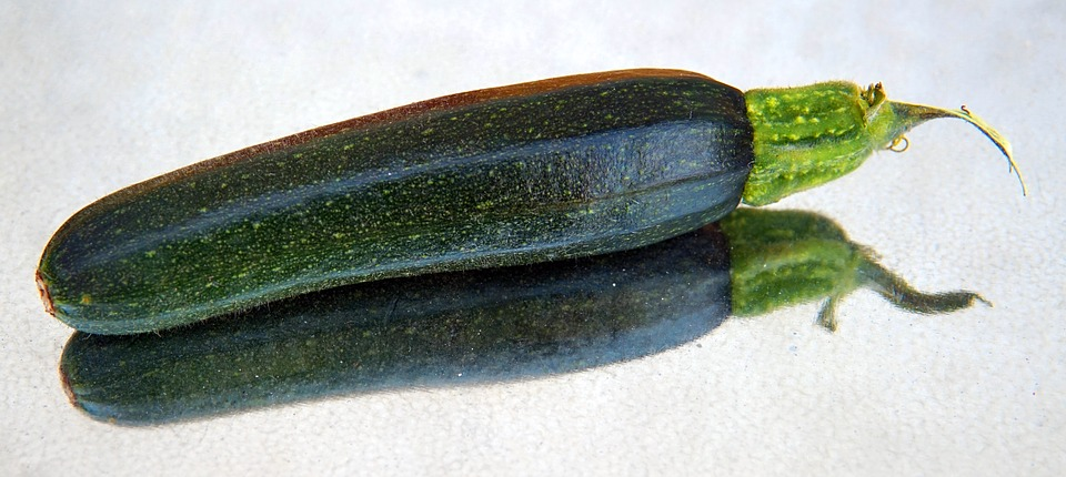 courgette, zucchini, on a reflective surface