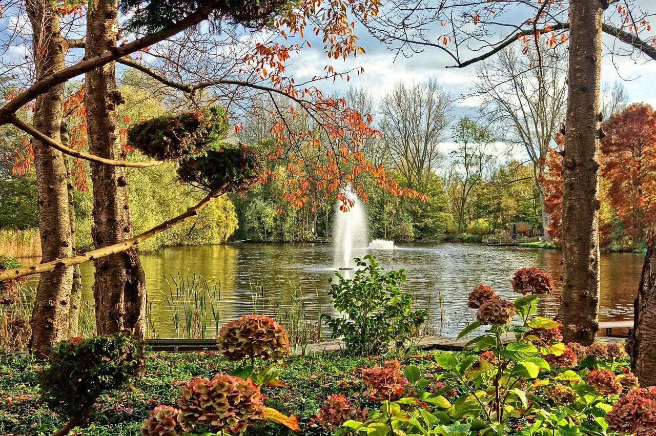 Garden design fountain
