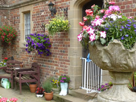 hanging baskets with various flowers in full bloom
