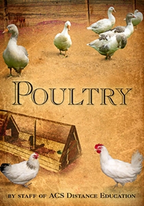 Poulttry Cover