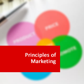 marketing management study guide Marketing channels: an organized system of marketing institutions, through which products, resources, information, funds, and/or product ownership flow from the point of production to the final user physical distribution: coordinating the flow of information and products.
