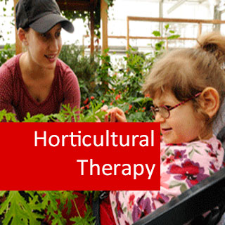 Horticultural Therapy 100 Hours Certificate Course
