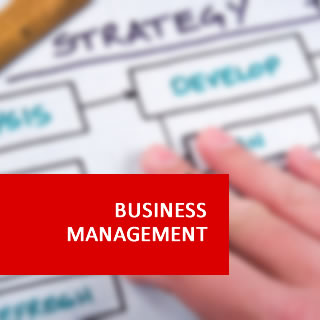 Link to Business Management Level 4 Diploma Information