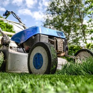 Landscaping Home Gardens 100 Hours Course - ADL - Academy for Distance Learning