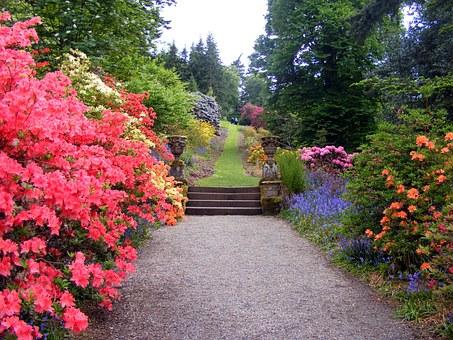 garden-470704__340