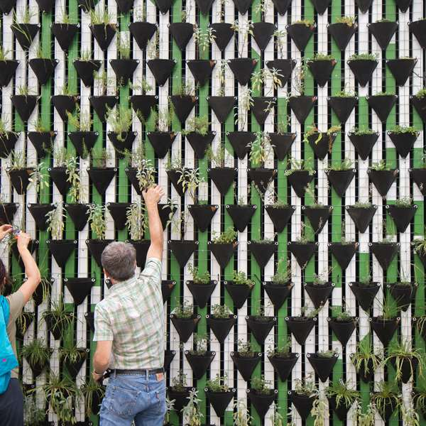 Green Walls and Roofs 100 Hours Certificate Course - ADL - Academy for Distance Learning