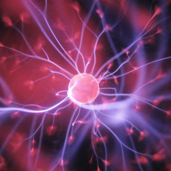 Human Biology IB - Bioenergetics 100 Hours Certificate Course - ADL - Academy for Distance Learning