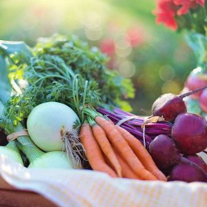 Nutritional Counselling Level 6 Advanced Diploma - ADL - Academy for Distance Learning