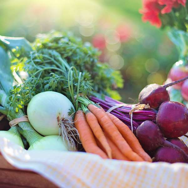 Home Vegetable Growing 100 Hours Course - ADL - Academy for Distance Learning