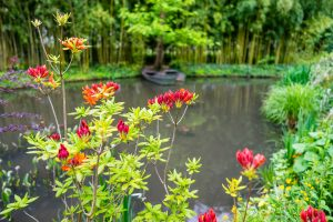 water lilies and flowers adorn a pond in Monet's garden