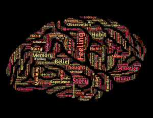A mind maps using a brain to show lots of human characteristics like reason and instinct